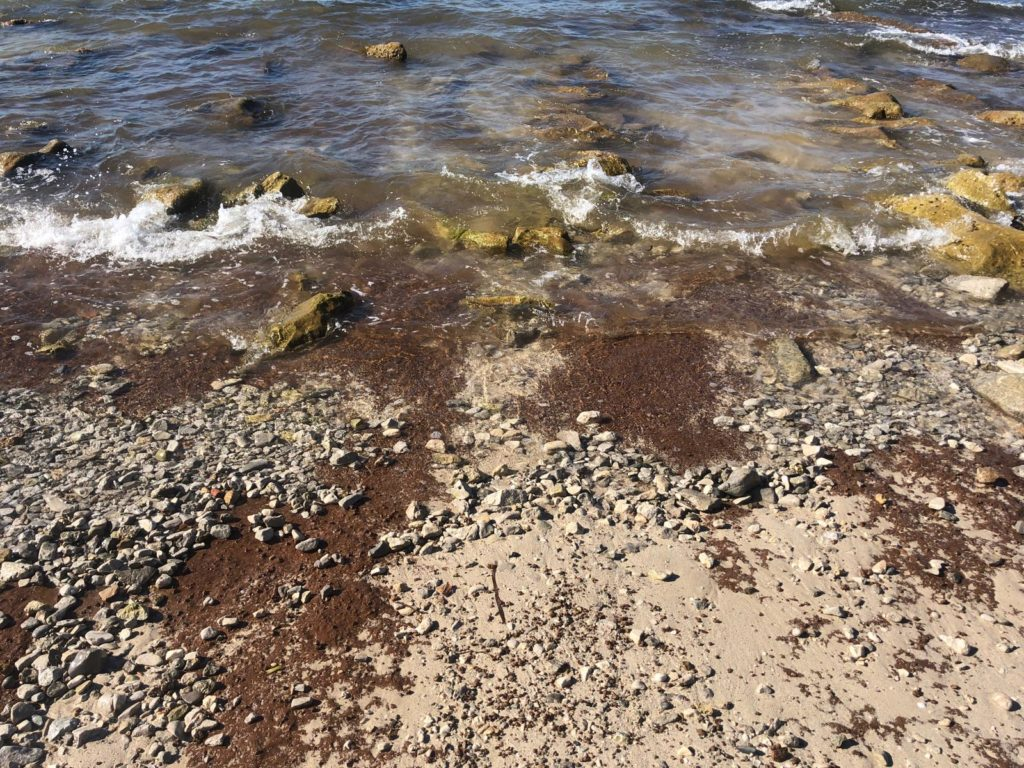 san vito lo capo la spiaggia scompare - no marine resort